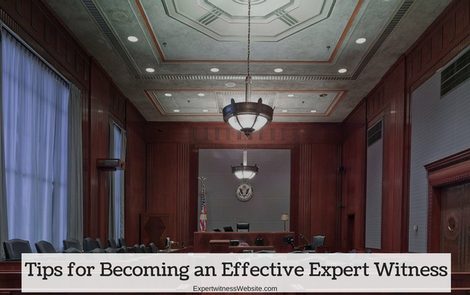 Effective Expert Witness